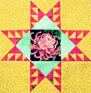 Not Your Grandmother`s Feathered Star -NEW!!!