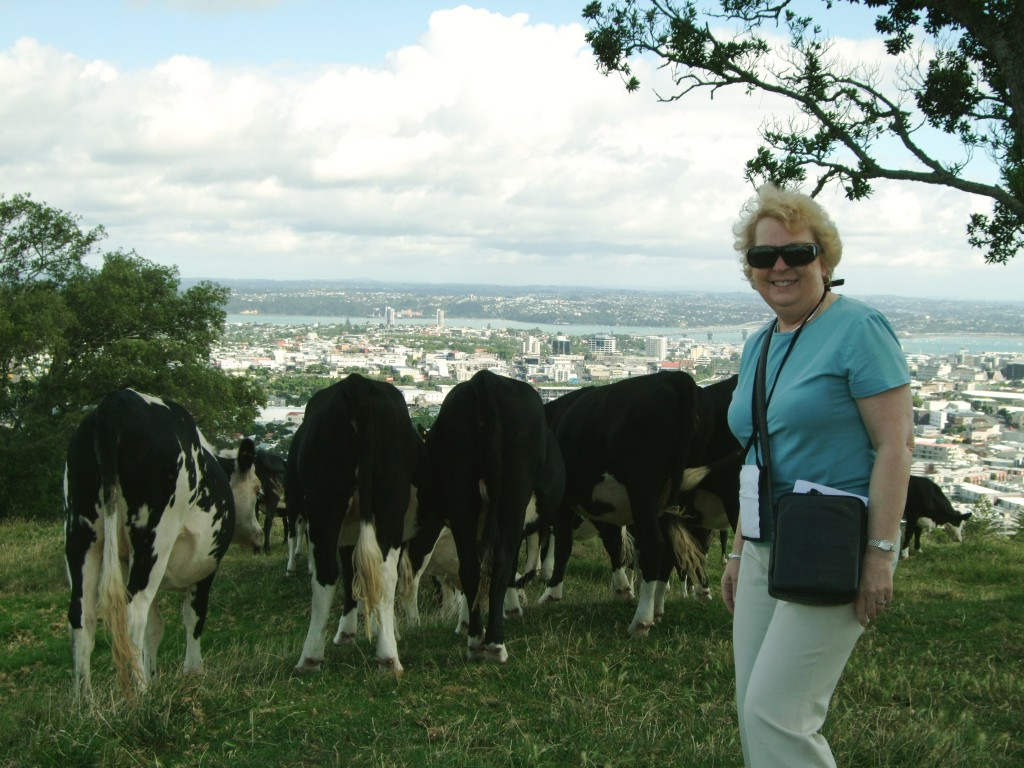 We were joined by a herd of cows...
