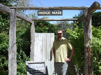 Steve checking out the Hedge Maze