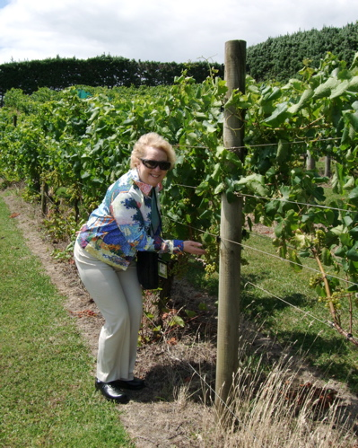 Just checking out the vines